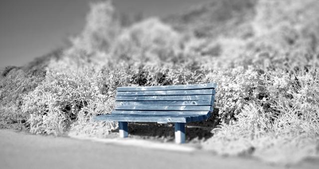Robin Grotke, Blue Bench