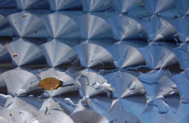 Leaf in a Pattern by Robin Grotke